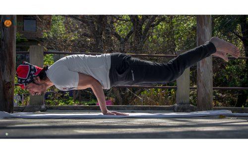 mayurasana yoga pose